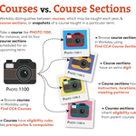Courses_v_Course Sections@1.5x.png