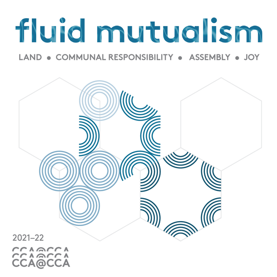 FluidMutualism_IG_Intro_1.png