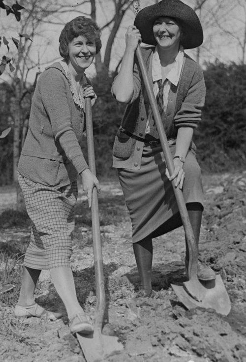 digging ladies cca