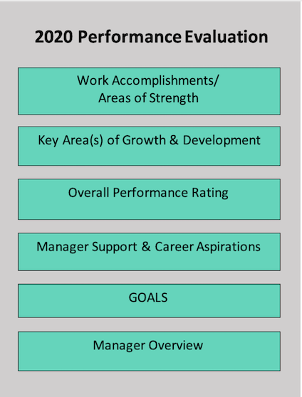 Overview of the performance evaluations process highlighting Work Results, Work Behaviors, and Goals as integral steps in the process