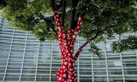 a tree whose multiple trunks are wrapped in red fabric with white polka dots