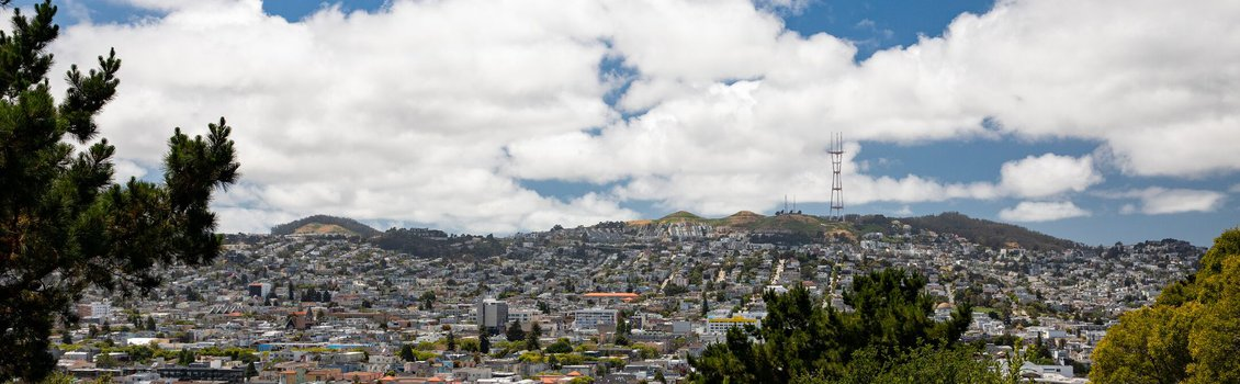SF Landscape_May 2020