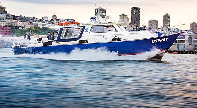 Tideline Ferry